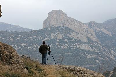 vogelreis-noord-spanje:-monegros-en-pyreneeen